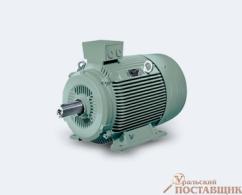Электродвигатель Siemens 1LG